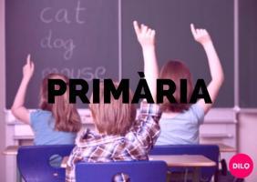 Classes de idiomes per nins de primària a inca DILO idiomes